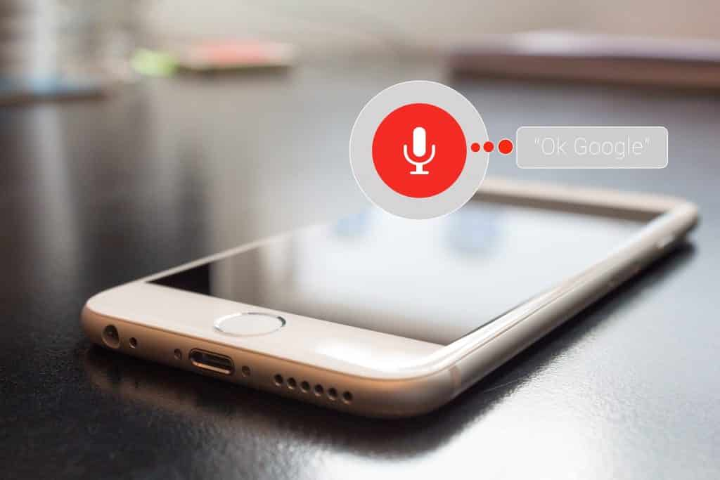 Google Vocal Search