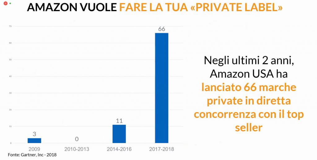 Grafico che mostra il lancio da parte di Amazon dei propri marchi anno su anno
