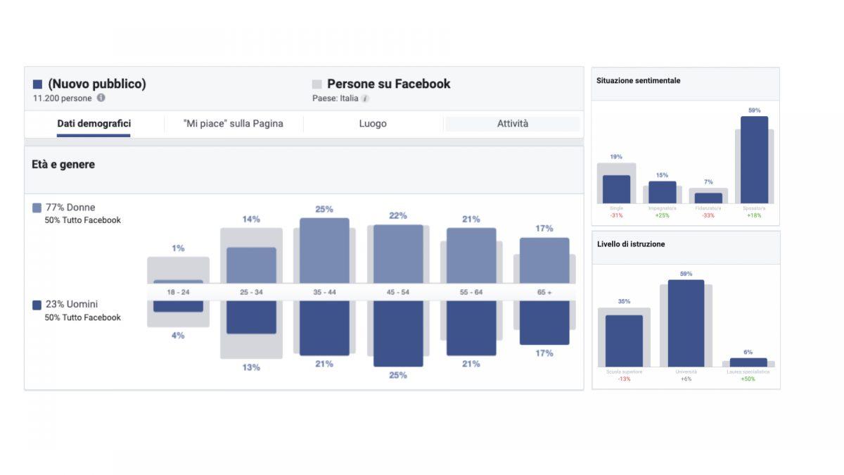 Anagrafica del pubblico da Facebook Insights di una pagina gestita
